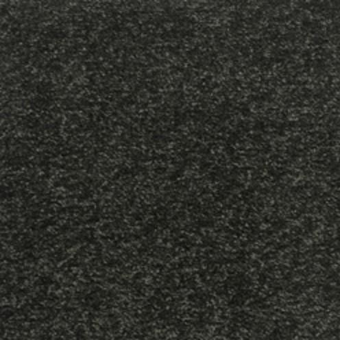 Champion Twist Carpet - Dark Truffle